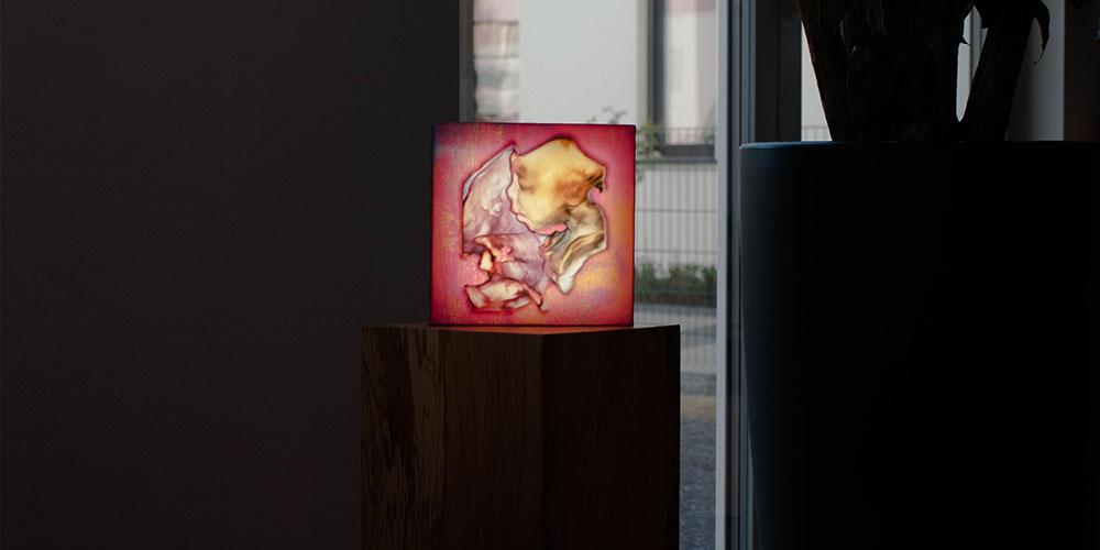 Beleuchtetes Bild 3DUltraschall